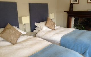 at the manor twin bed blue