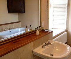 at the manor sink side view