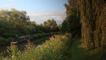 tasburgh canal