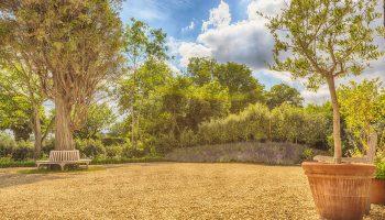 whitley garden bench