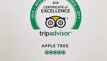 apple tree tripadvisor