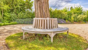 whitely bench