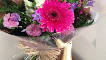 devonshire fizz and flowers