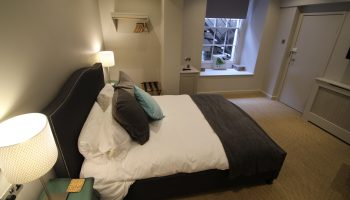 edgar grey double bird cushion